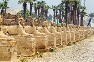 Avenue-of-Sphinxes-thumb