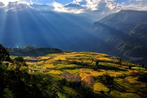 Landscape with terraced rice fields and rays in Sapa, Lao Cai, Vietnam