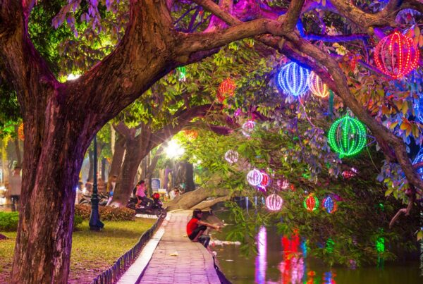 Lights in Hanoi garden
